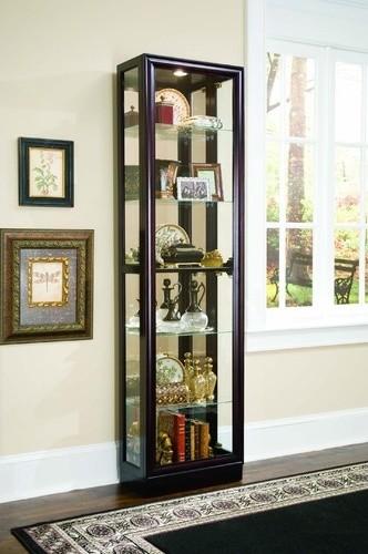 Keepsakes Frame Curio Cabinet - Modern - Bookcases - by Wayfair