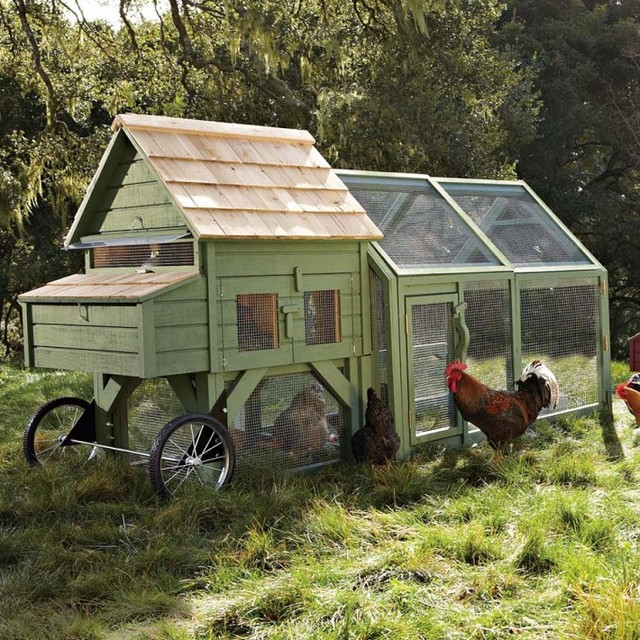 Alexandria Chicken Coop and Run contemporary outdoor products