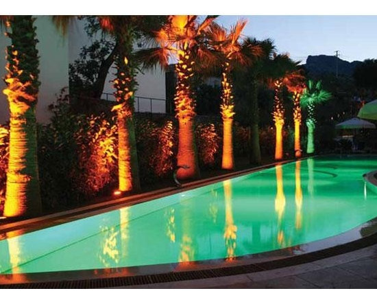 Savi Buddy White LED Dimmable Pool Light with 150' Cord - -Take advantage of your pool's beauty at night!