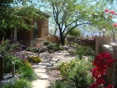 Arizona Landscaping Pictures
