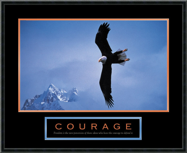 Courage: Bald Eagle Framed Print traditional-prints-and-posters
