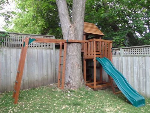Tree house built