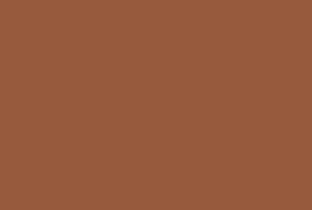 Rookwood Terra Cotta Sw2803 Paint Paint By Sherwin