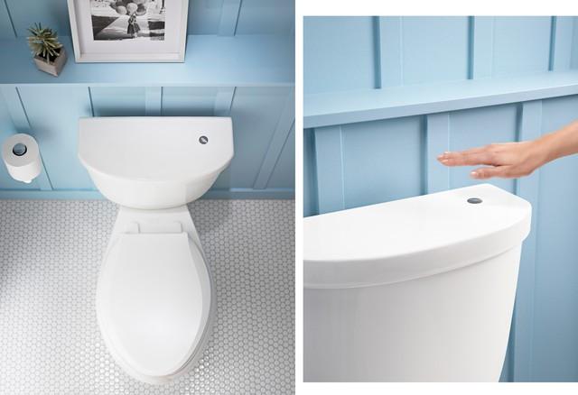 toilette toilet transitional toilets montreal by thalassa domicile. Black Bedroom Furniture Sets. Home Design Ideas