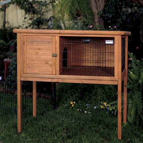 Extreme Rabbit Shack modern-small-pet-supplies