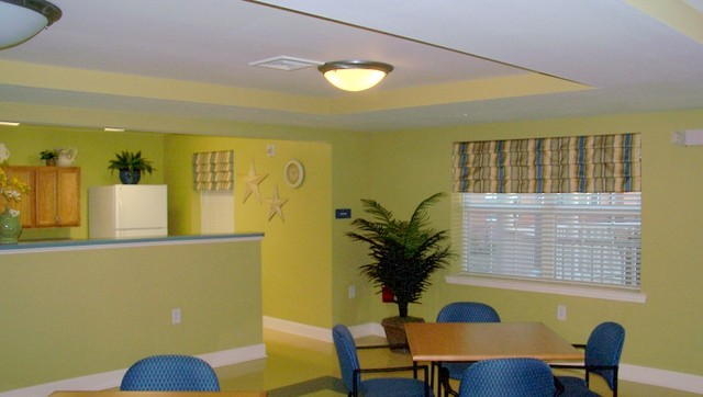 Tanning Salon/Office - tropical - window blinds - baltimore - by ...