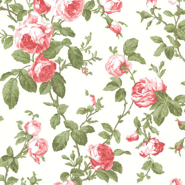 Wilda Red Roselle Trail Wallpaper. rustic-wallpaper