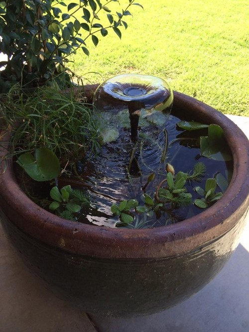 New Container Water Garden Fish Pond