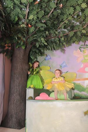 Make a Wish Fairy Garden Play Room