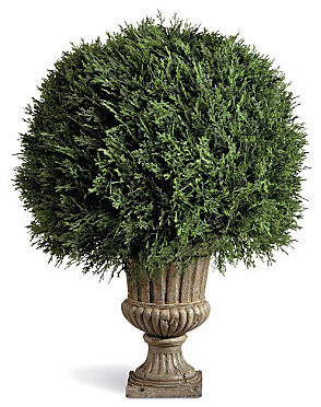 "20"" Cypress Ball Topiary contemporary-indoor-pots-and-planters"