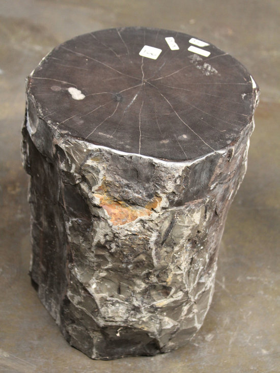 IndoModern - Natural Petrified Wood Stool - The Petrified Wood Stool brings the natural beauty of fossilized wood and vegetation to your home. Each stool has been carefully crafted by nature over the past 5 million years in the Central Java region of Indonesia.