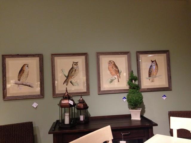 Absolutely loooooooove these owl photos at Hanks in LR!