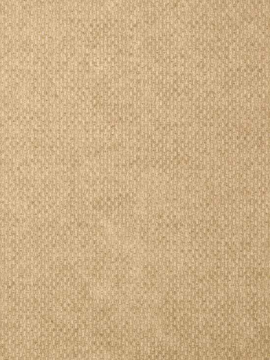 Texture Resource Volume 4 - Flat Shots - Monaco wallpaper in Antique (T14168) from Thibaut's Texture Resource Volume 4 Collection