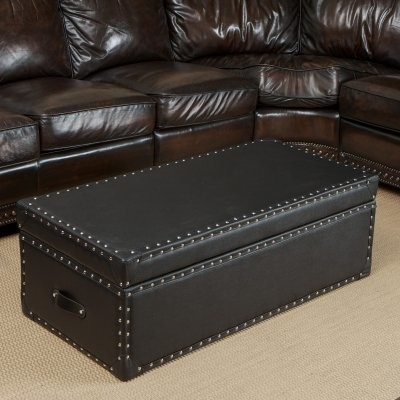 Nino Leather Storage Trunk Ottoman modern-ottomans-and-cubes