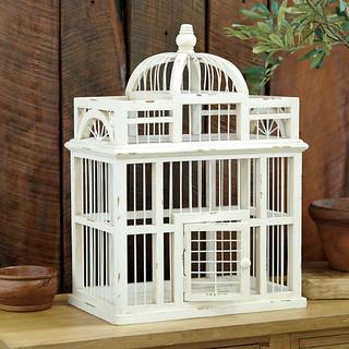 Parisian Aviary Traditional Home Decor By Ballard