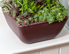 Burgundy Trough contemporary outdoor planters