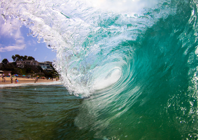 Tunneling for Turquoise tropical-prints-and-posters