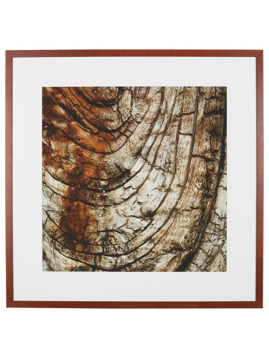 Ethan Allen - Custom Natures l - The warm-toned, age rings of a tree in this giclee are repeated in its wooden veneer, box-style frame. A wide-set white mat creates visual harmony.