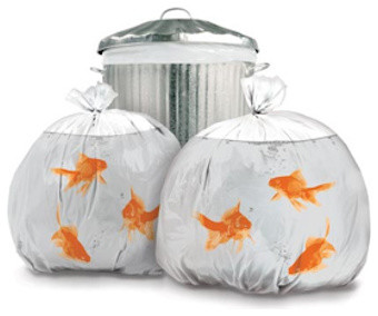Goldfish Garbage Bags eclectic cleaning supplies