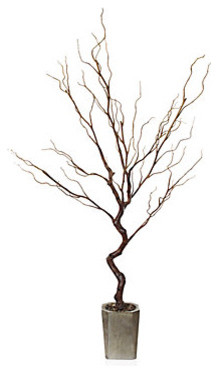 Stick tree brown modern plants by z gallerie for Indoor decorative live plants