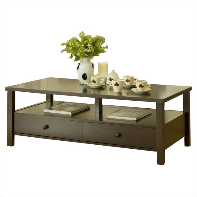 Enitial Lab Olympia 2-Drawer Coffee Table modern-coffee-tables