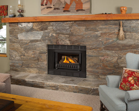 Retrofire Insert Series Fireplace - Valor Retrofire Insert Series