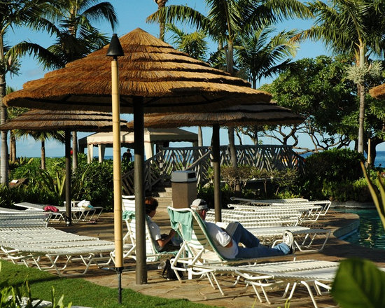 Thatch Umbrella - Natural - Add a tropical touch to your home, restaurant, hotel, resort and more with a thatch umbrella. Not only is natural thatch a beautiful and unique roofing material, but it is also a highly renewable resource that can add to the sustainability and green initiative of your construction project.