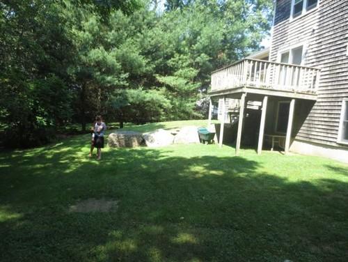 level backyard