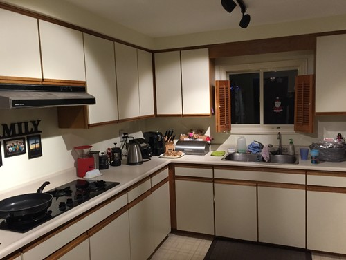 Need help for my kitchen...almond melamine and honey oak cupboards!