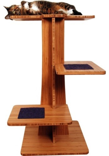 36 Acacia Cat Tree Modern Cat Furniture By Wayfair