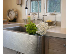 Farmhouse Brushed Nickel traditional kitchen sinks