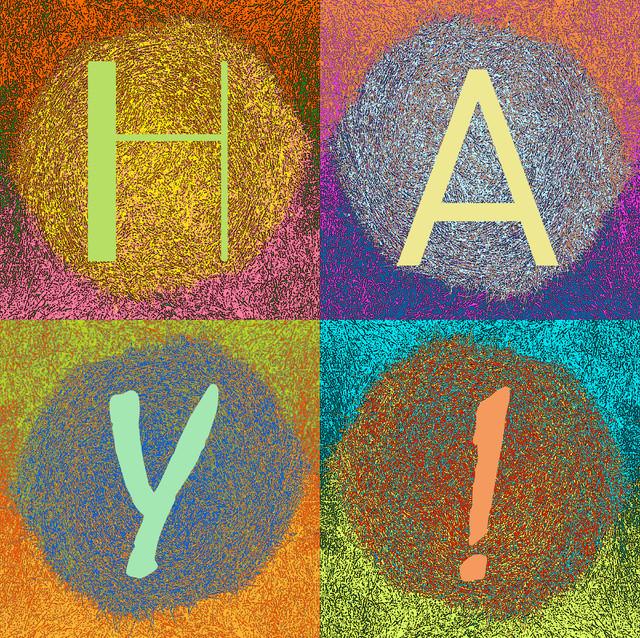HAY! contemporary-artwork
