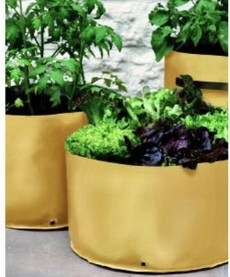Small Spaces Vegetable Planters contemporary-outdoor-pots-and-planters