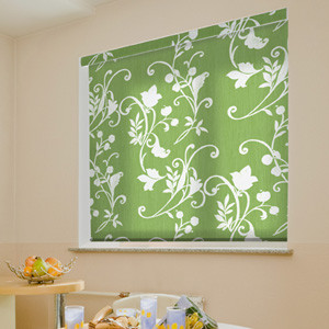 Blindsgalore Expressions Solar Shades: Botanical Patterns contemporary-window-treatments