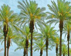 Palms by Ben and Raisa Gertsberg - canvas art, art print, giclee tropical-artwork