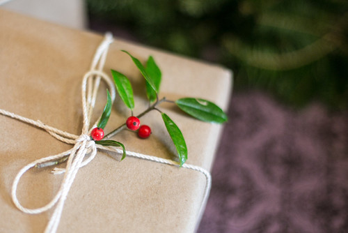 Small berries on a branch added to gift wrapper