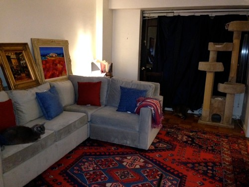 need RUG ideas to go with my light grey sofa and blue curtains...?