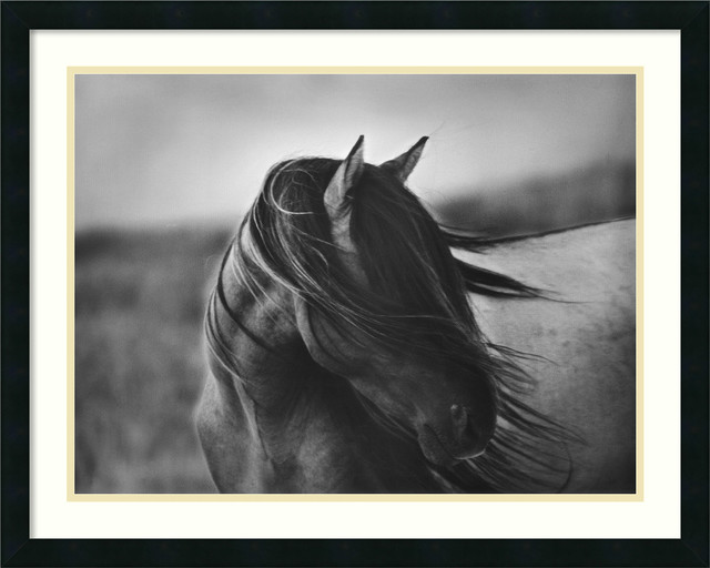 Fierce Grace Framed Print by Tony Stromberg traditional-prints-and-posters