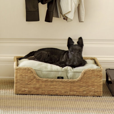 Suzanne Kasler Dog Bed Basket - Ballard Designs eclectic pet accessories