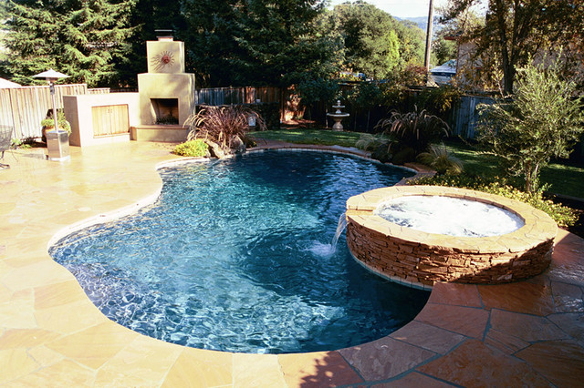 Swan pools swimming pool construction company backyard for Swimming pool installation companies