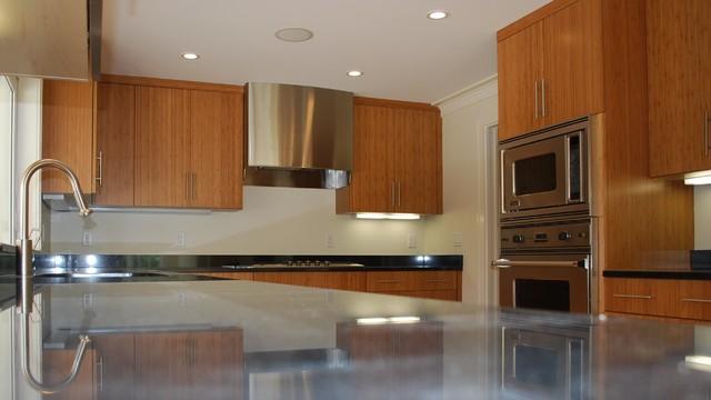 Kitchen Remodels contemporary-kitchen