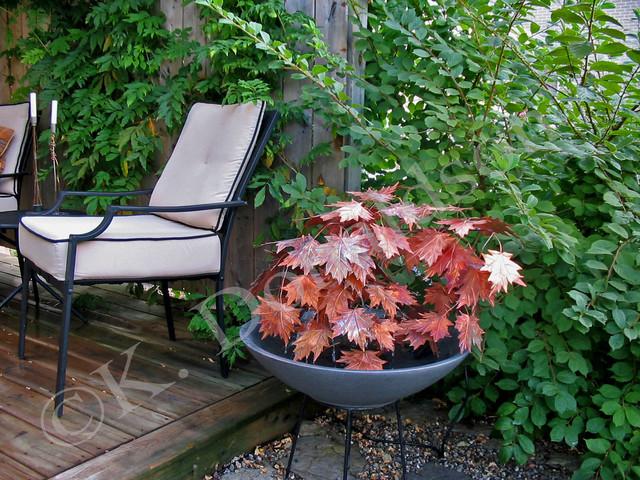 Small Maple Leaf Copper Fountain contemporary-patio