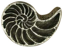 Nautilus modern-cabinet-and-drawer-knobs