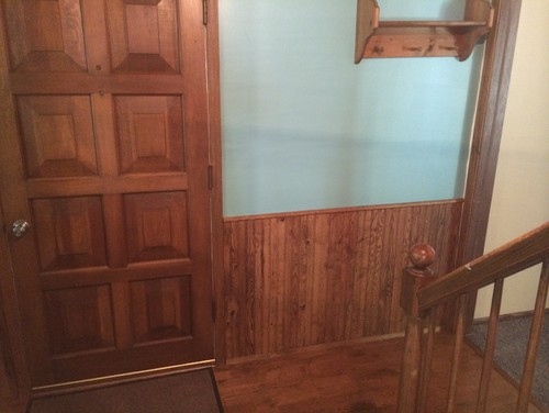 Remove paneling Should i paint wood paneling