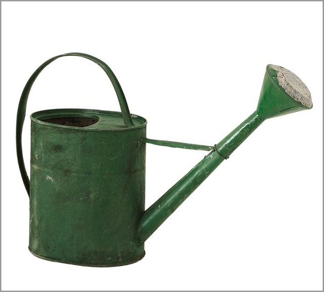 pb found watering can traditional watering cans by ForGardening Tools Watering