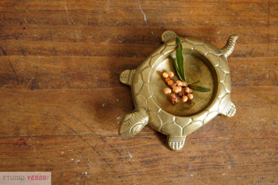 Brass Turtle by Studio Yesss! contemporary-accessories-and-decor