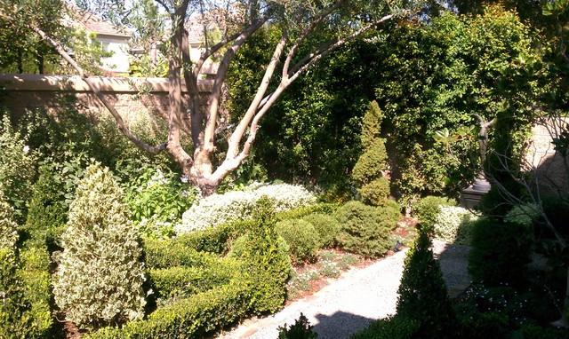 Assorted Mediterranean Gardens traditional-landscape