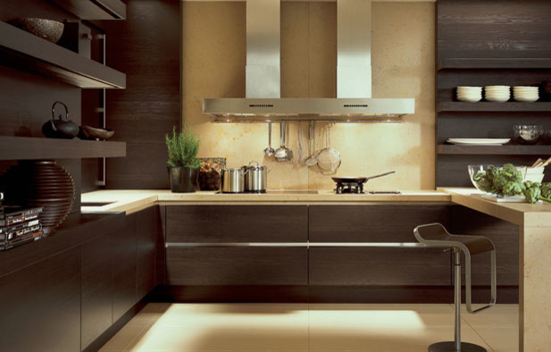 kitchens by designs living san diego contemporary kitchen cabinetry