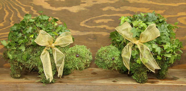 Living ivy animal topiaries for Indoor decorative live plants