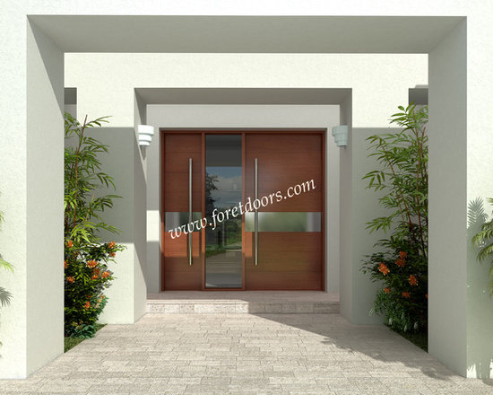 Modern front entry doors / contemporary front entry doors - Solid wood modern entry door with stainless steel stripe and stainless steel pulls